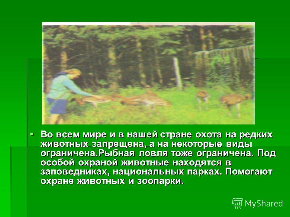 Во всем мире и в нашей стране охота на редких животных запрещена, а на некоторые виды ограничена.Рыбная ловля тоже ограничена. Под особой охраной животные находятся в заповедниках, национальных парках. Помогают охране животных и зоопарки. Во всем мир