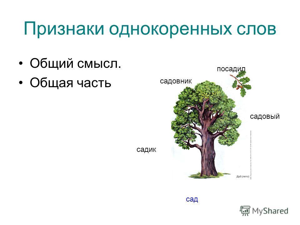 Признаки однокоренных слов Общий смысл. Общая часть сад садик садовый садовник посадил