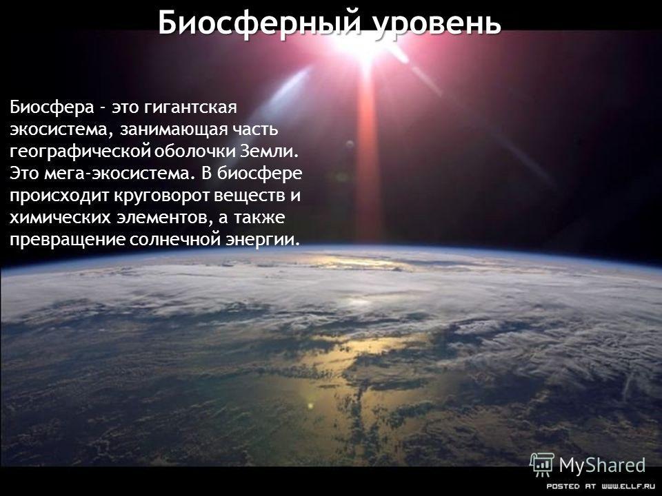 Биосферный уровень Биосфера - это гигантская экосистема, занимающая часть географической оболочки Земли. Это мега-экосистема. В биосфере происходит круговорот веществ и химических элементов, а также превращение солнечной энергии.