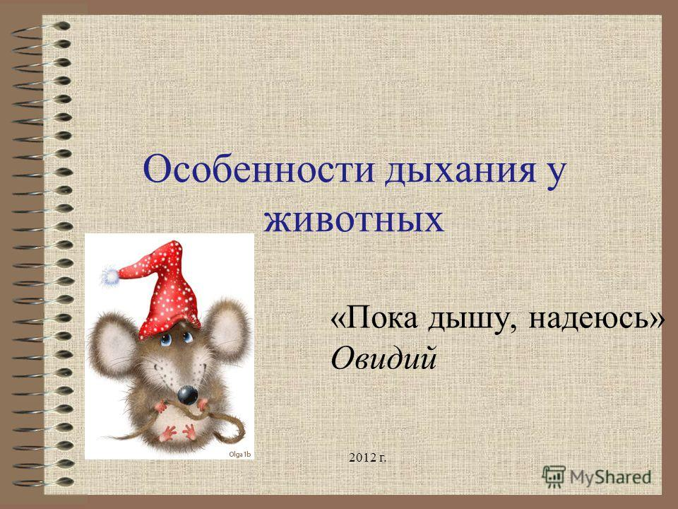 Особенности дыхания у животных «Пока дышу, надеюсь» Овидий 2012 г.