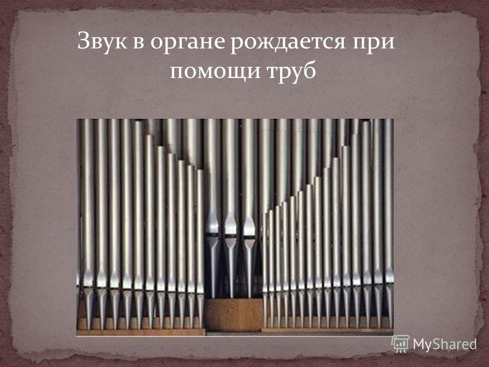 Звук в органе рождается при помощи труб