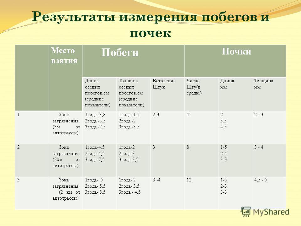 Результаты измерения побегов и почек Место взятия Побеги Почки Длина осевых побегов,см (средеие показатели) Толщина осевых побегов,см (средеие показатели) Ветвление Штук Число Шту(в среде.) Длина мм Толщина мм 1Зона загрязнения (3 м от автотрассы) 1