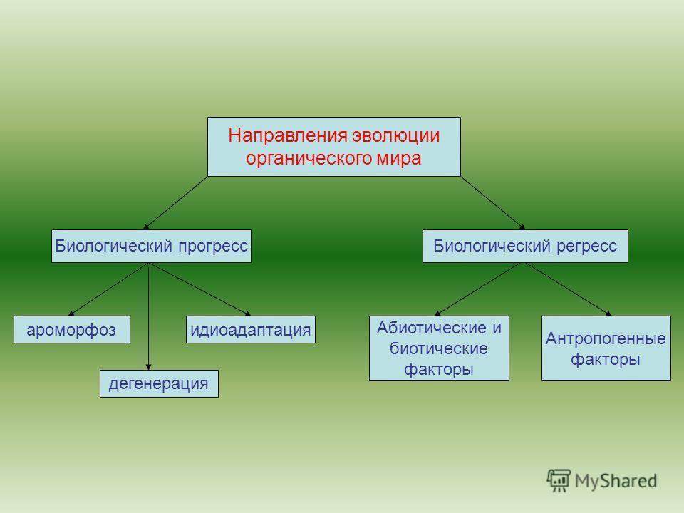 Направления эволюции органического мира Биологический прогресс ароморфоз дегенерация идиоадаптация Абиотические и биотические факторы Антропогенные факторы Биологический регресс