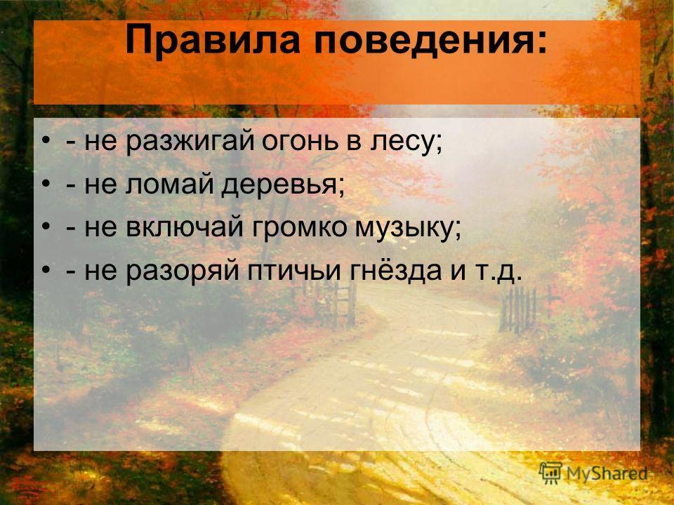 Правила поведения: - не разжигай огонь в лесу; - не ломай деревья; - не включай громко музыку; - не разоряй птичьи гнёзда и т.д.