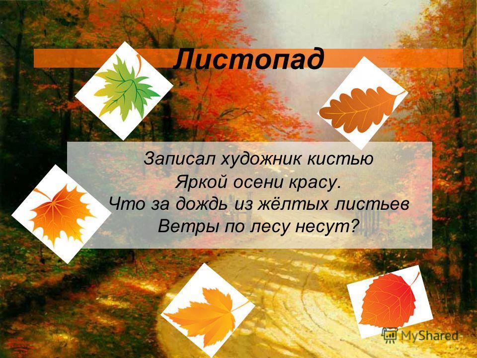 Листопад Записал художник кистью Яркой осени красу. Что за дождь из жёлтых листьев Ветры по лесу несут?