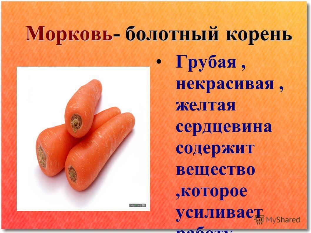 Морковь- болотный корень Грубая, некрасивая, желтая сердцевина содержит вещество,которое усиливает работу сердечной мышцы Содержит КАРОТИН который превращается в Витамин А ВИТАМИН А: Улучшает зрение Замедляет процесс старения Необходим для роста новы