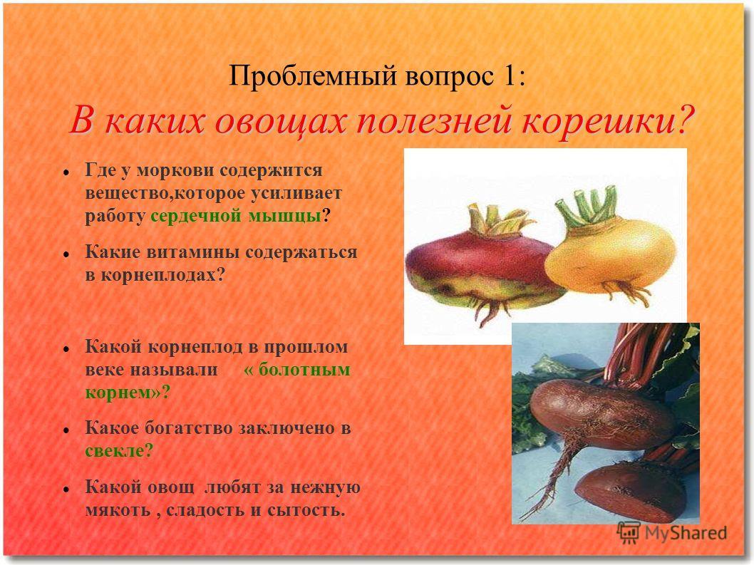 В каких овощах полезней корешки? Проблемный вопрос 1: В каких овощах полезней корешки? Где у моркови содержится вещество,которое усиливает работу сердечной мышцы? Какие витамины содержаться в корнеплодах? Какой корнеплод в прошлом веке называли « бол