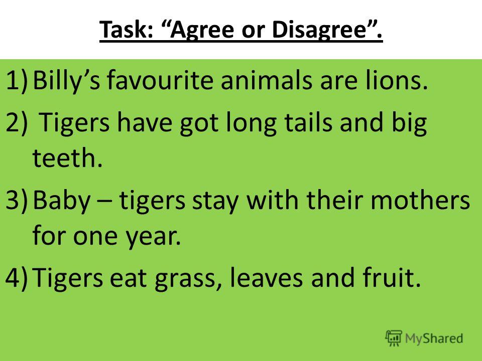 Task: Agree or Disagree. 1)Billys favourite animals are lions. 2) Tigers have got long tails and big teeth. 3)Baby – tigers stay with their mothers for one year. 4)Tigers eat grass, leaves and fruit.