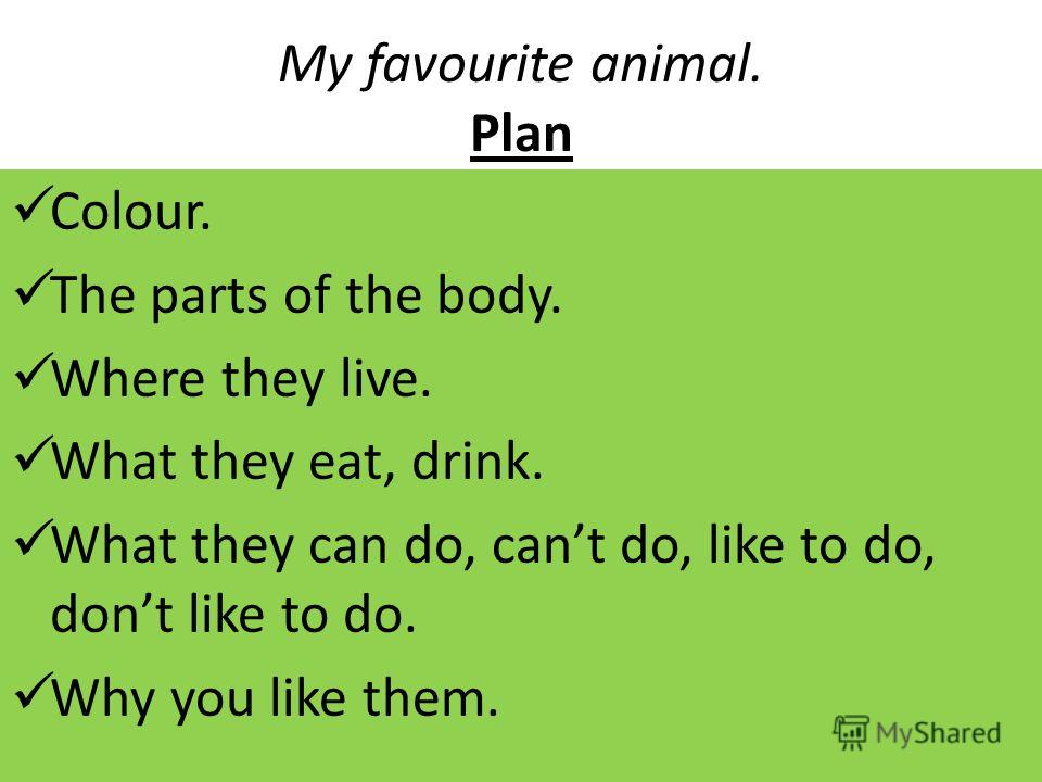 My favourite animal. Plan Colour. The parts of the body. Where they live. What they eat, drink. What they can do, cant do, like to do, dont like to do. Why you like them.
