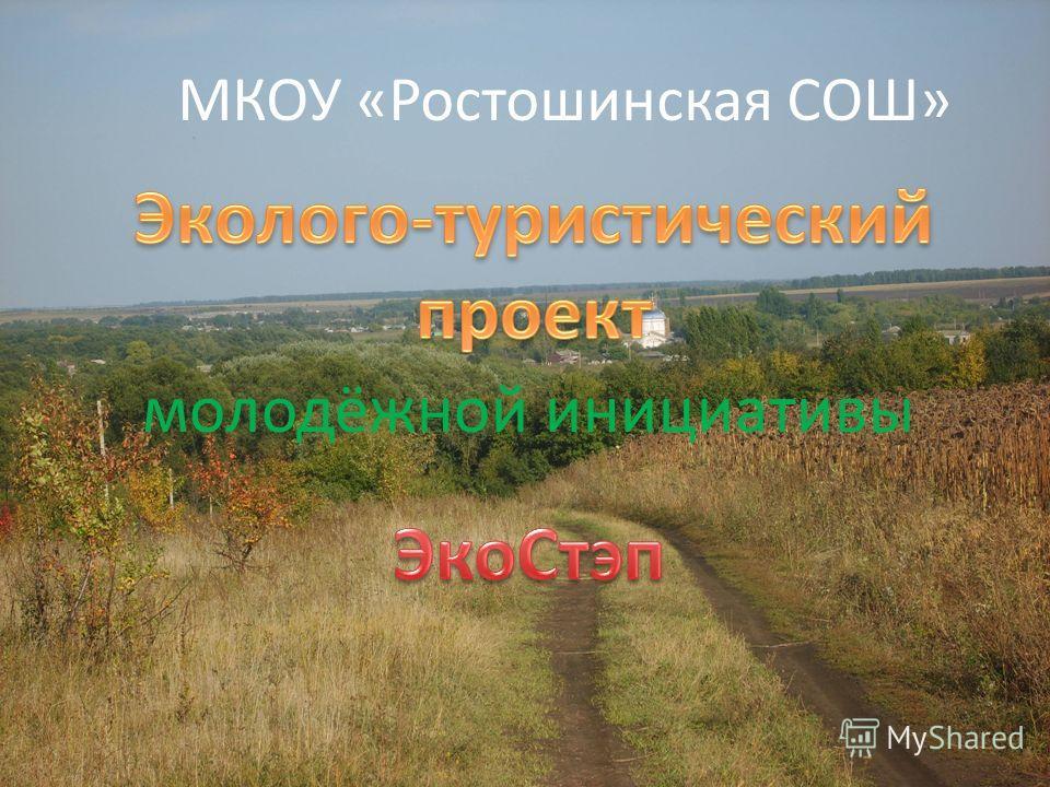 МКОУ «Ростошинская СОШ» молодёжной инициативы