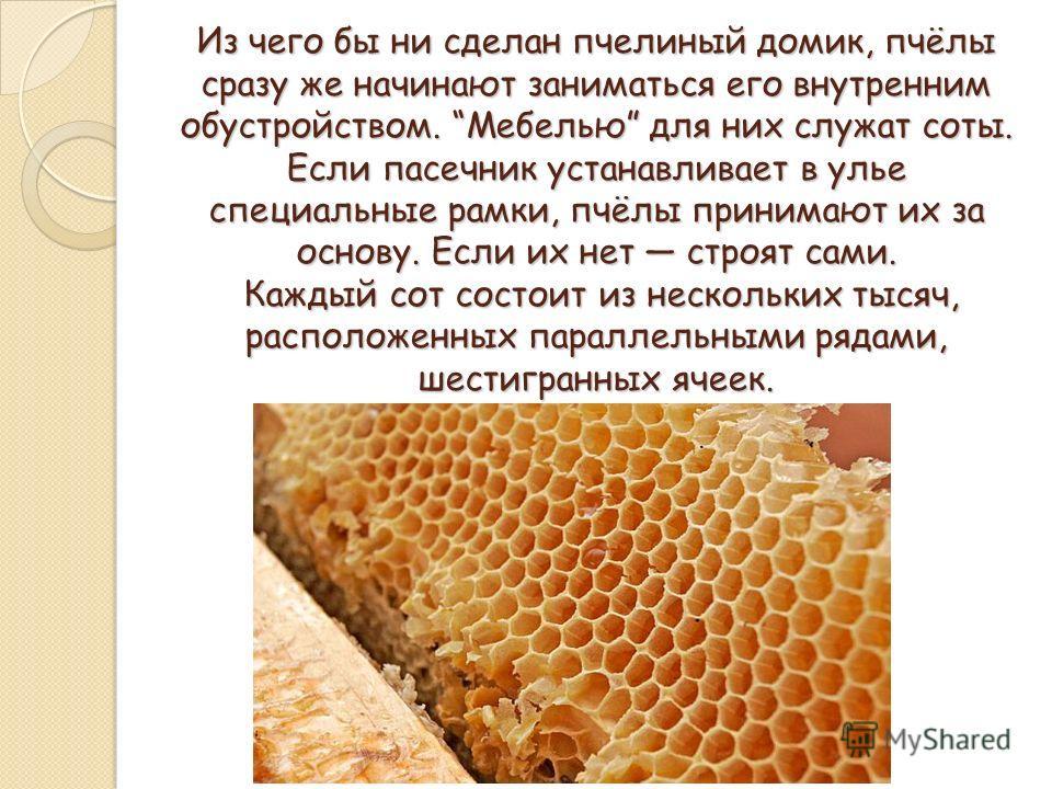 Из чего бы ни сделан пчелиный домик, пчёлы сразу же начинают заниматься его внутренним обустройством. Мебелью для них служат соты. Если пасечник устанавливает в улье специальные рамки, пчёлы принимают их за основу. Если их нет строят сами. Каждый сот