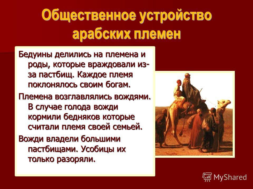 Общественное устройство арабских племен Бедуины делились на племена и роды, которые враждовали из- за пастбищ. Каждое племя поклонялось своим богам. Племена возглавлялись вождями. В случае голода вожди кормили бедняков которые считали племя своей сем