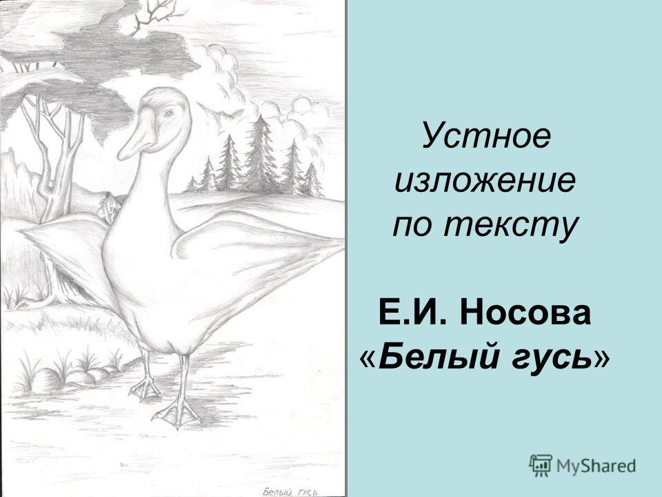 Устное изложение по тексту Е.И. Носова «Белый гусь»