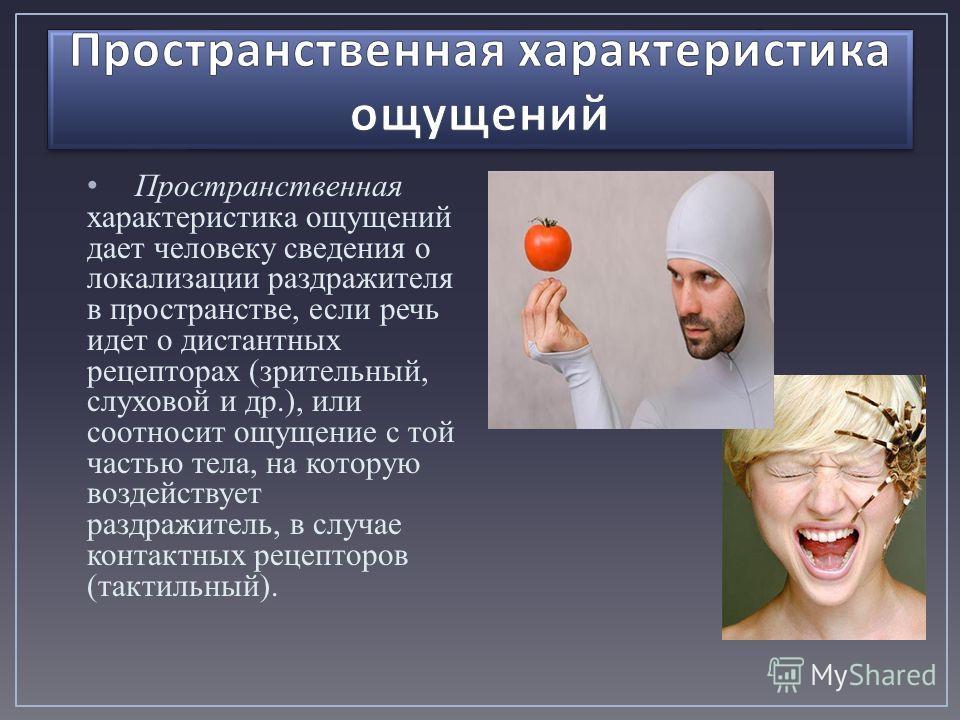 Пространственная характеристика ощущений дает человеку сведения о локализации раздражителя в пространстве, если речь идет о дистантных рецепторах (зрительный, слуховой и др.), или соотносит ощущение с той частью тела, на которую воздействует раздражи