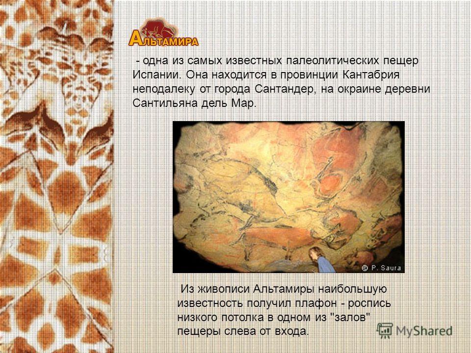- одна из самых известных палеолитических пещер Испании. Она находится в провинции Кантабрия неподалеку от города Сантандер, на окраине деревни Сантильяна дель Мар. Из живописи Альтамиры наибольшую известность получил плафон - роспись низкого потолка