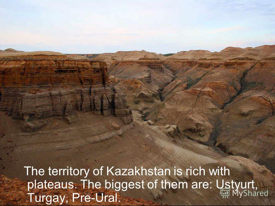 The territory of Kazakhstan is rich with plateaus. The biggest of them are: Ustyurt, Turgay, Pre-Ural.