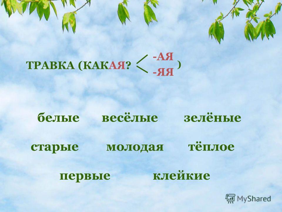 молодая ТРАВКА (КАКАЯ? -АЯ -ЯЯ ) белые зелёныевесёлые старые первые клейкие тёплое