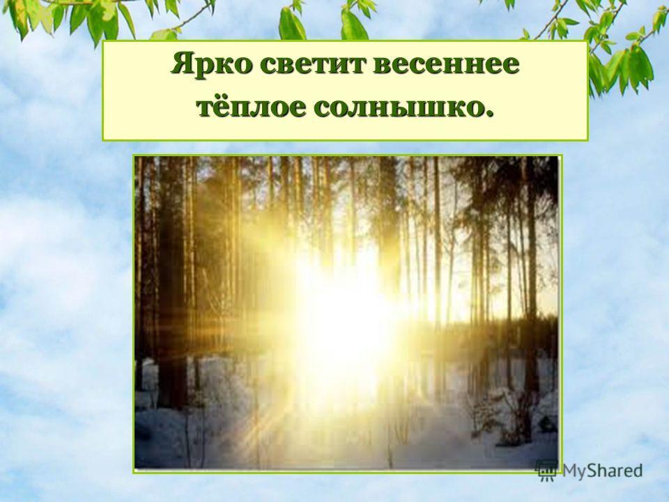 Что происходит в природе весной? Ярко светтит весеннее тёплое солнышко.