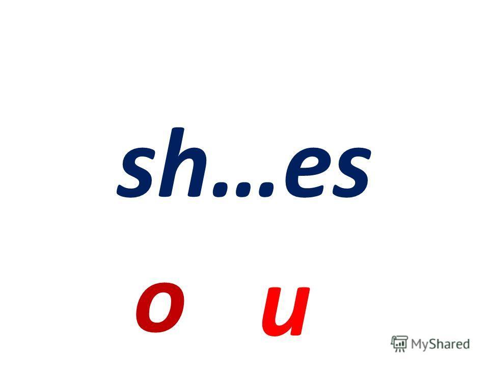 a sh……rt or ir