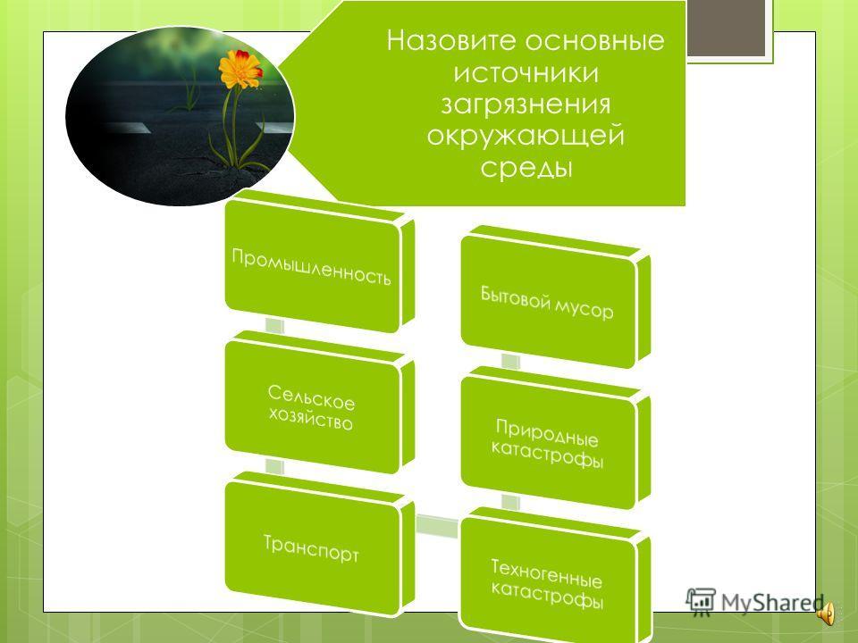 1. Что вы знаете об экологических проблемах общества? 2. Нужно ли волноваться? 3. Стоит ли предотвращать экологические проблемы?