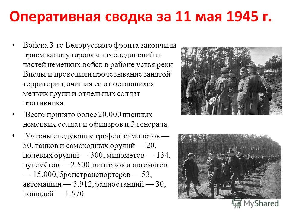Оперативная сводка за 11 мая 1945 г. Войска 3-го Белорусского фронта закончили прием капитулировавших соединений и частей немецких войск в районе устья реки Вислы и проводили прочесывание занятой территории, очищая ее от оставшихся мелких групп и отд