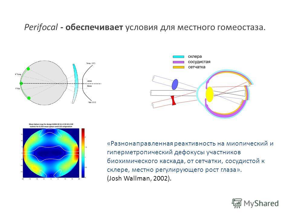 Perifocal - обеспечивает условия для местного гомеостаза. «Разнонаправленная реактивность на миопический и гиперметропический де фокусы участников биохимического каскада, от сетчатки, сосудистой к склере, местно регулирующего рост глаза». (Josh Wallm