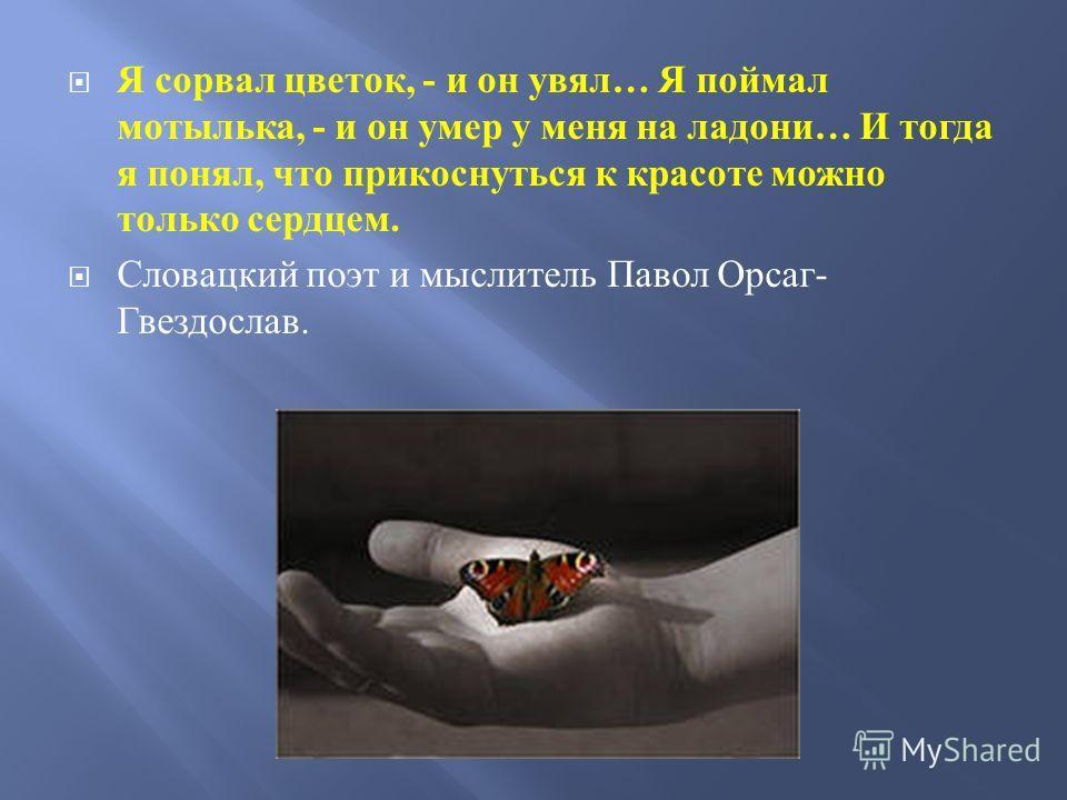 Я сорвал цветок, - и он увял … Я поймал мотылька, - и он умер у меня на ладони … И тогда я понял, что прикоснуться к красоте можно только сердцем. Словацкий поэт и мыслитель Павол Орсаг - Гвездослав.