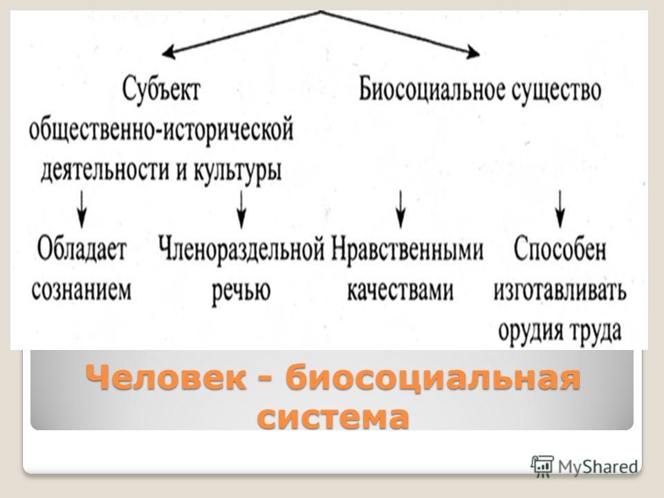 Человек - биосоциальная система