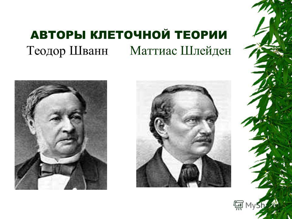 АВТОРЫ КЛЕТОЧНОЙ ТЕОРИИ Теодор Шванн Маттиас Шлейден