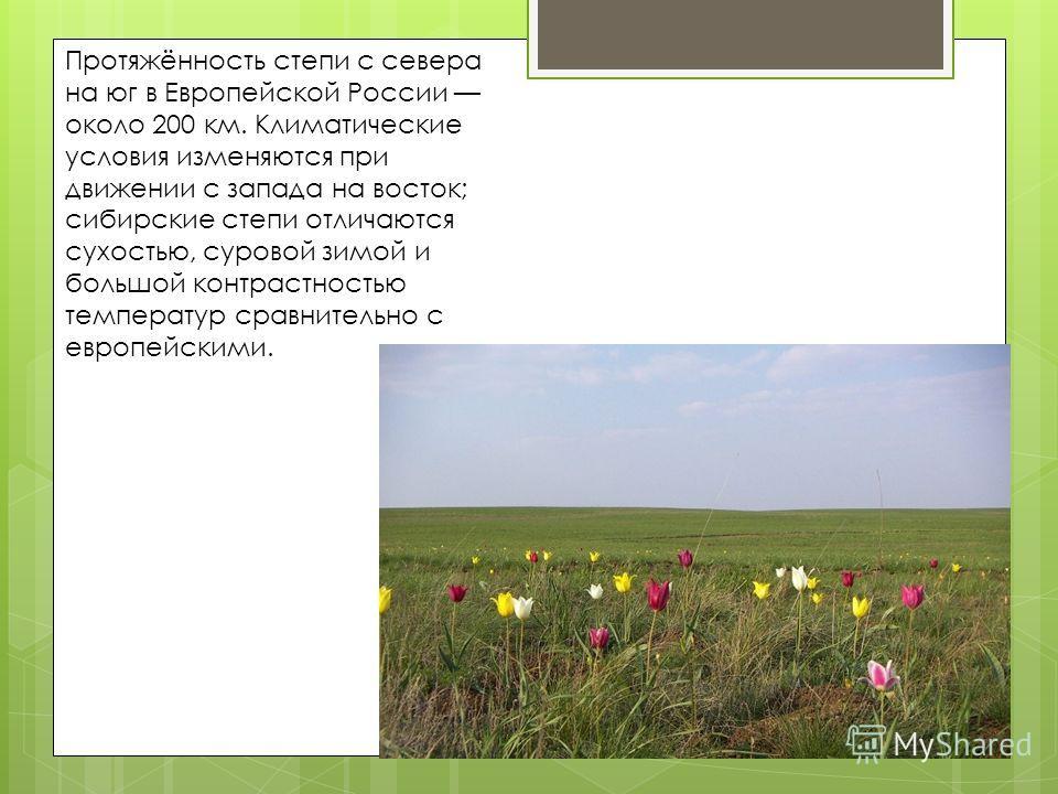 Протяжённость степи с севера на юг в Европейской России около 200 км. Климатические условия изменяются при движении с запада на восток; сибирские степи отличаются сухостью, суровой зимой и большой контрастностью температур сравнительно с европейскими