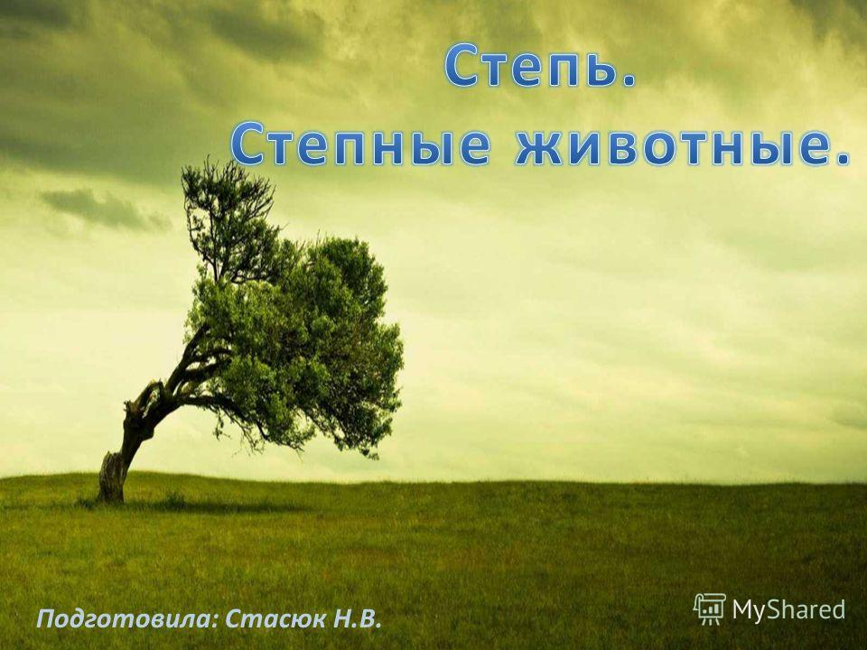 Подготовила: Стасюк Н.В.