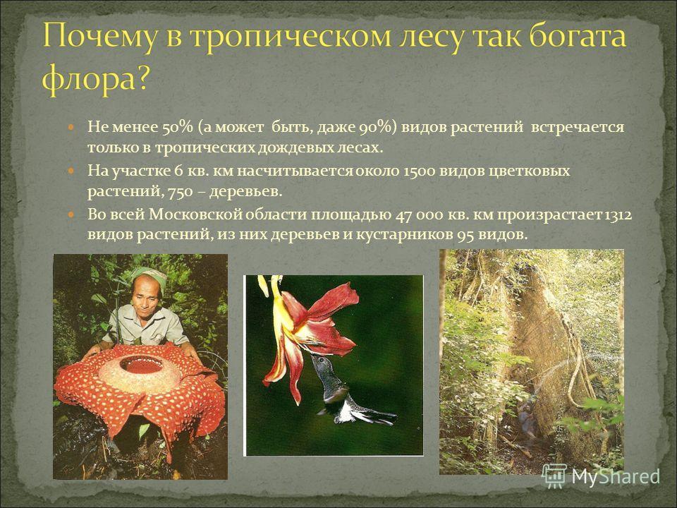 Не менее 50% (а может быть, даже 90%) видов растений встречается только в тропических дождевых лесах. На участке 6 кв. км насчитывается около 1500 видов цветковых растений, 750 – деревьев. Во всей Московской области площадью 47 000 кв. км произрастае