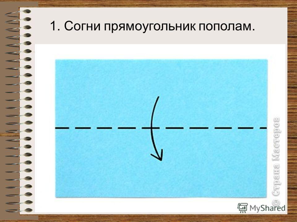 1. Согни прямоугольник пополам.