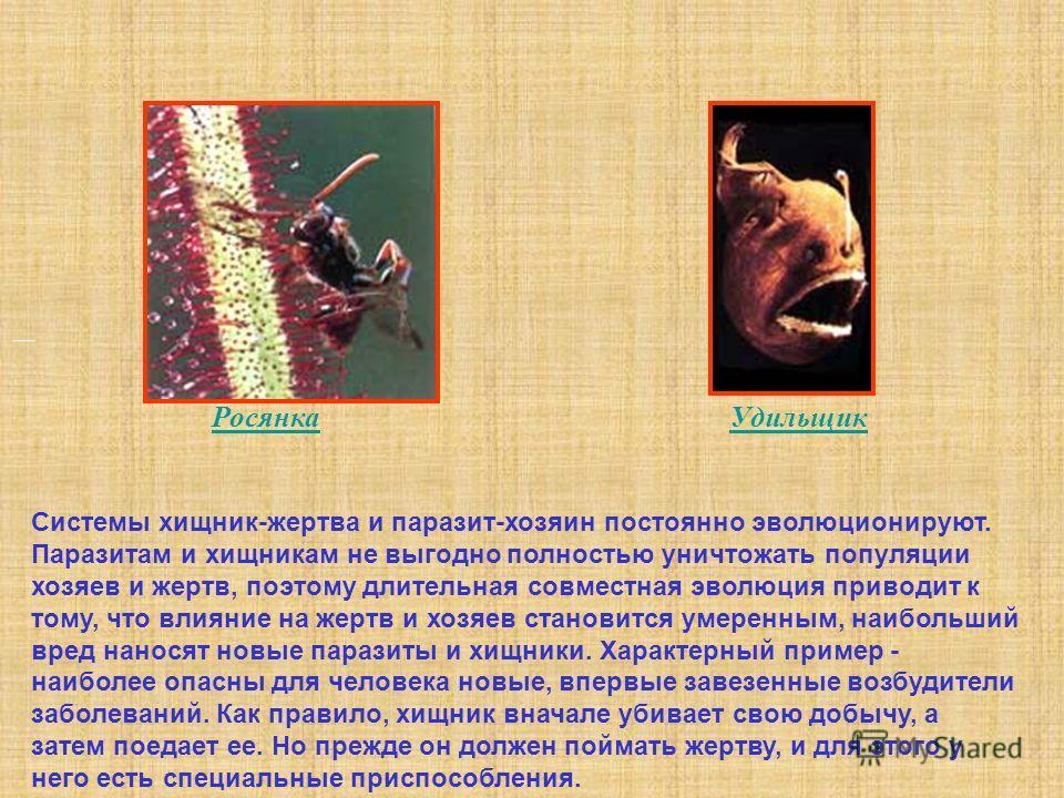 Системы хищник-жертва и паразит-хозяин постоянно эволюционируют. Паразитам и хищникам не выгодно полностью уничтожать популяции хозяев и жертв, поэтому длительная совместная эволюция приводит к тому, что влияние на жертв и хозяев становится умеренным