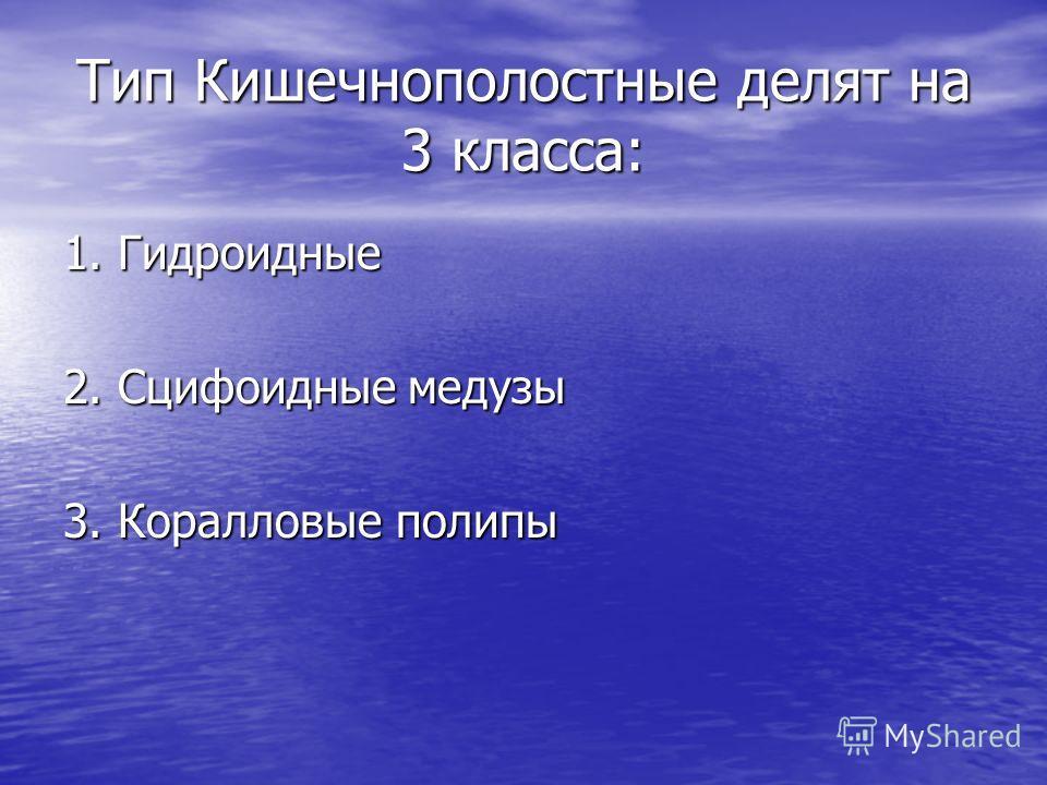 Тип Кишечнополостные делят на 3 класса: 1. Гидроидные 2. Сцифоидные медузы 3. Коралловые полипы