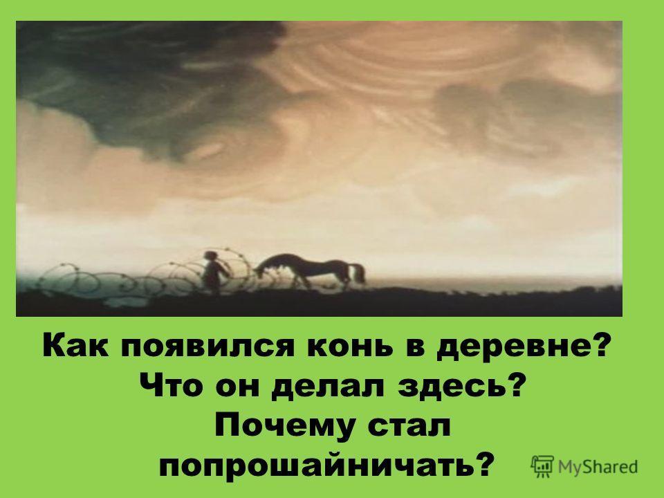 Как появился конь в деревне? Что он делал здесь? Почему стал попрошайничать?
