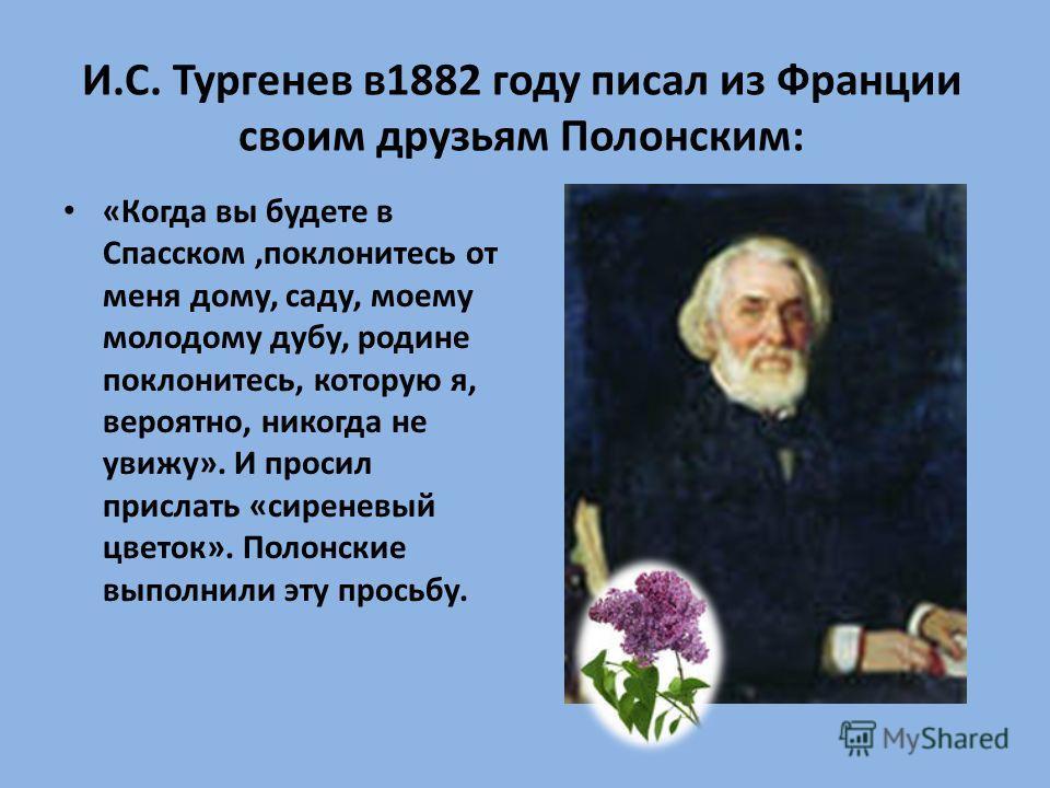 И.С. Тургенев в 1882 году писал из Франции своим друзьям Полонским: «Когда вы будете в Спасском,поклонитесь от меня дому, саду, моему молодому дубу, родине поклонитесь, которую я, вероятно, никогда не увижу». И просил прислать «сиреневый цветок». Пол