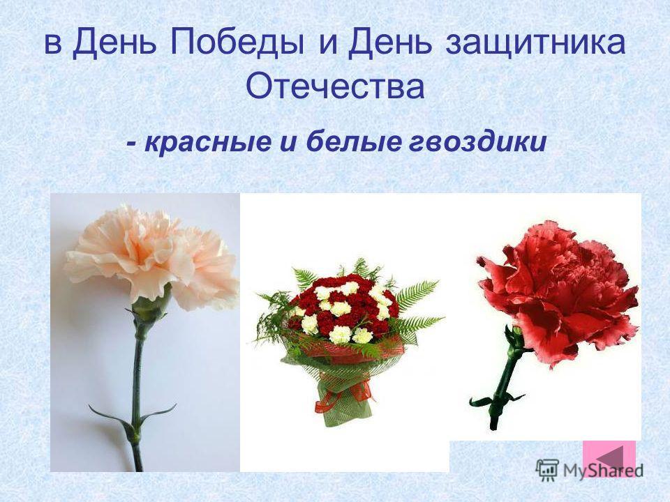 в День Победы и День защитника Отечества - красные и белые гвоздики