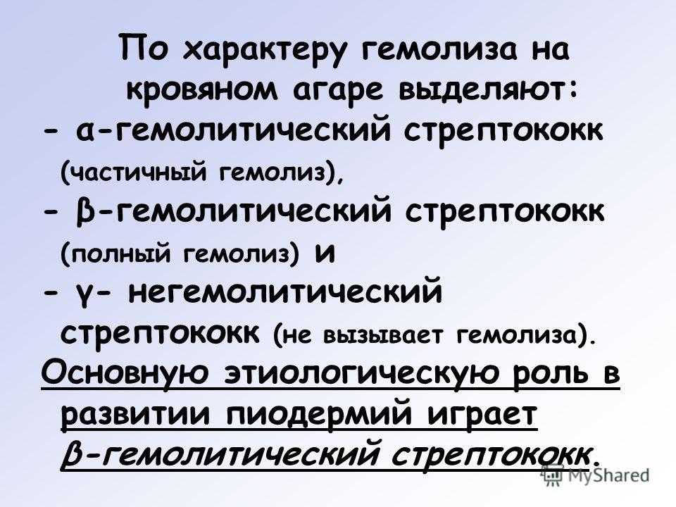 По характеру гемолиза на кровяном агаре выделяют: - α-гемолитический стрептококк (частичный гемолиз), - β-гемолитический стрептококк (полный гемолиз) и - γ- негемолитический стрептококк (не вызывает гемолиза). Основную этиологическую роль в развитии
