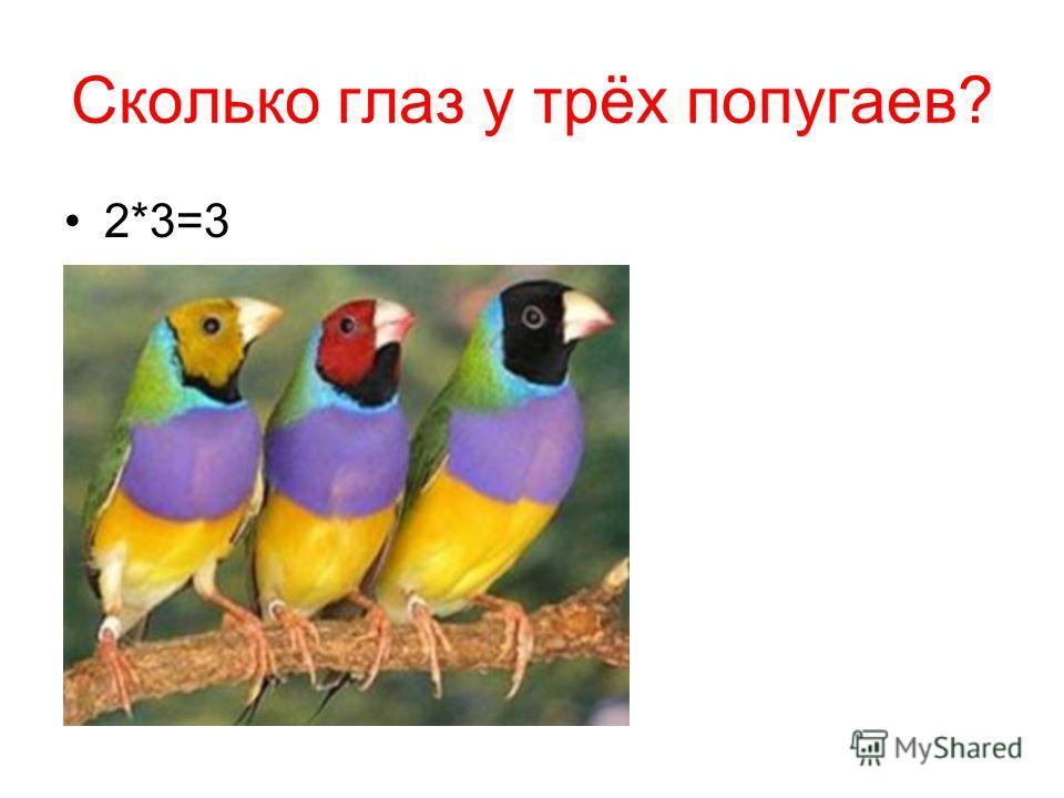 Сколько глаз у трёх попугаев? 2*3=3