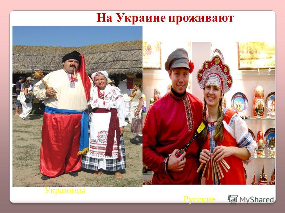Украинцы Русские На Украине проживают
