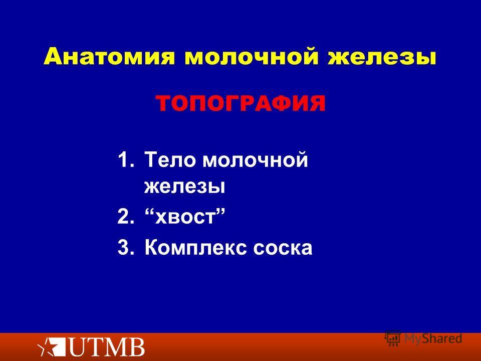 Анатомия молочной железы 1. 1. Тело молочной железы 2. 2. хвост 3. 3. Комплекс соска ТОПОГРАФИЯ