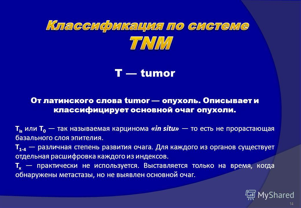 T tumor От латинского слова tumor опухоль. Описывает и классифицирует основной очаг опухоли. T is или T 0 так называемая карцинома «in situ» то есть не прорастающая базального слоя эпителия. T 1-4 различная степень развития очага. Для каждого из орга