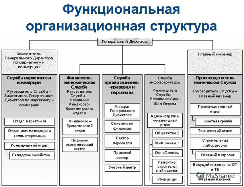 Схема организационной структуры предприятия на примере компании