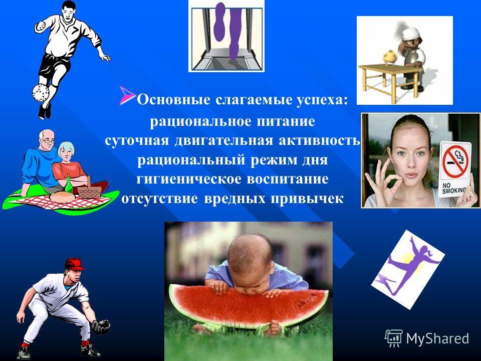 Основные слагаемые успеха: рациональное питание суточная двигательная активность рациональный режим дня гигиеническое воспитание отсутствие вредных привычек