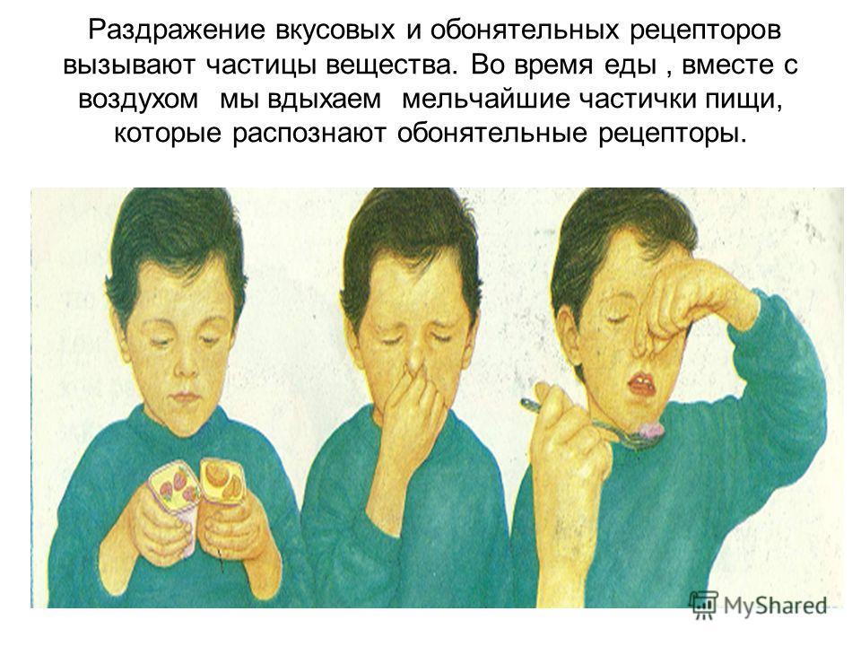 Раздражение вкусовых и обонятельных рецепторов вызывают частицы вещества. Во время еды, вместе с воздухом мы вдыхаем мельчайшие частички пищи, которые распознают обонятельные рецепторы.