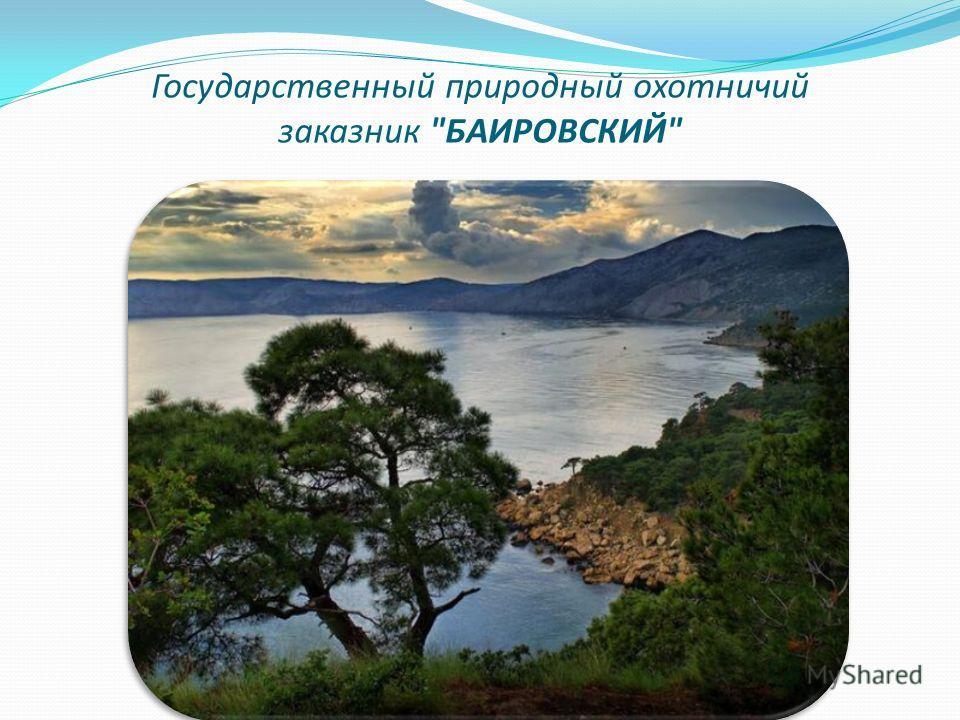 Государственный природный охотничий заказник БАИРОВСКИЙ