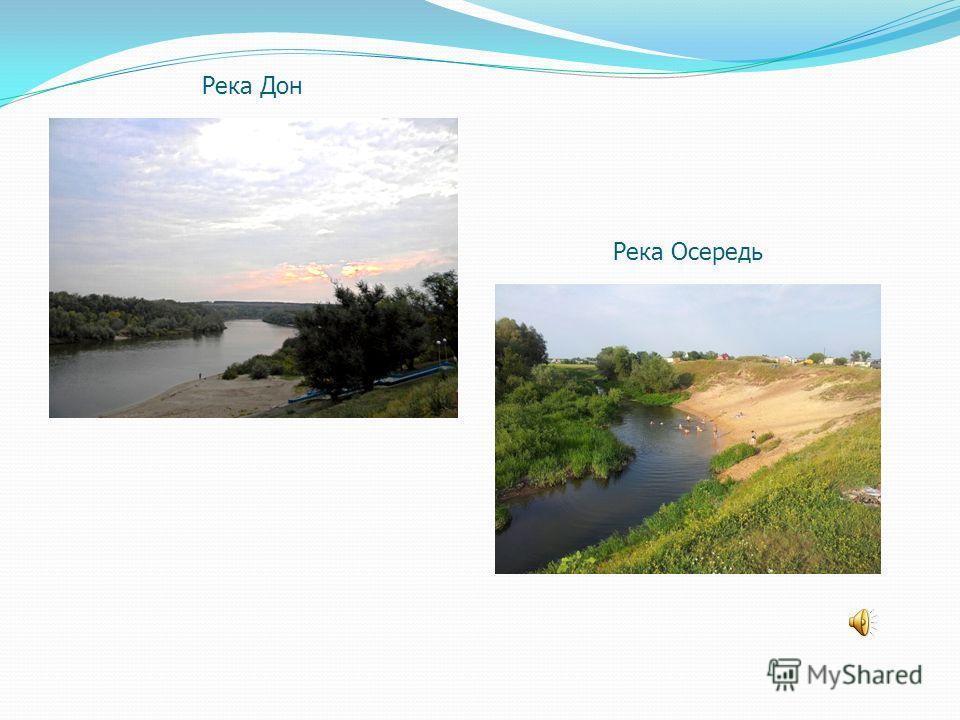 Река Дон Река Осередь