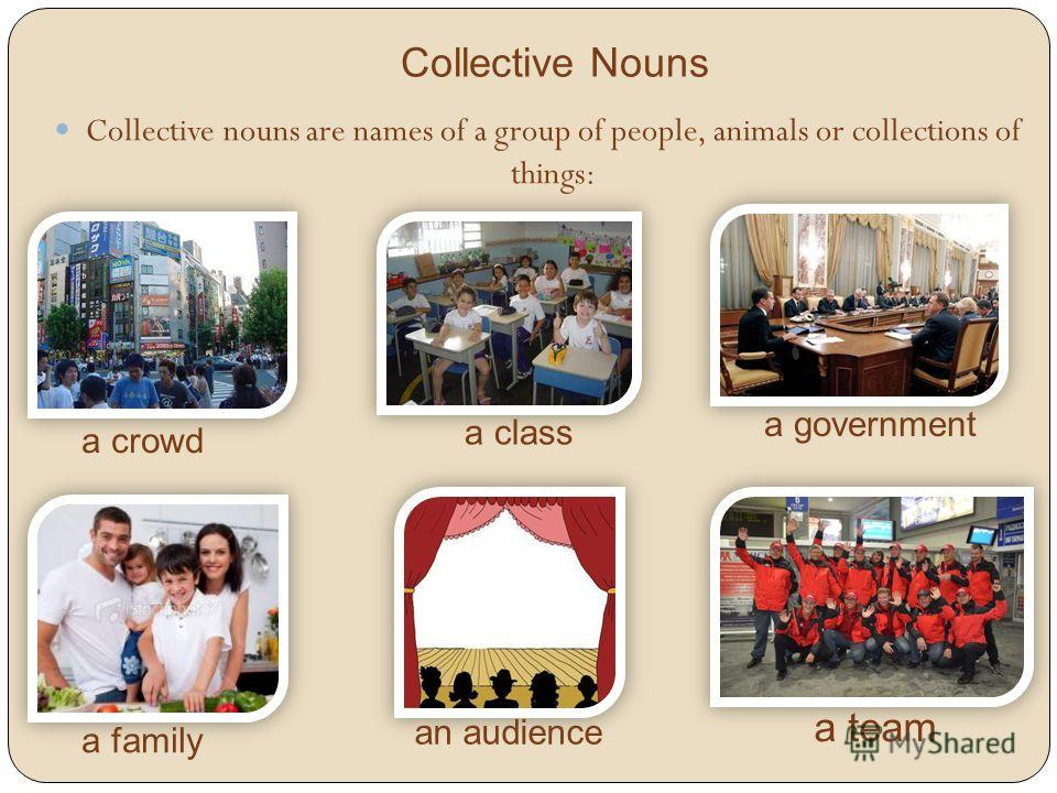 Collective Nouns Collective nouns are names of a group of people, animals or collections of things: a crowd a class a government a family an audience a team