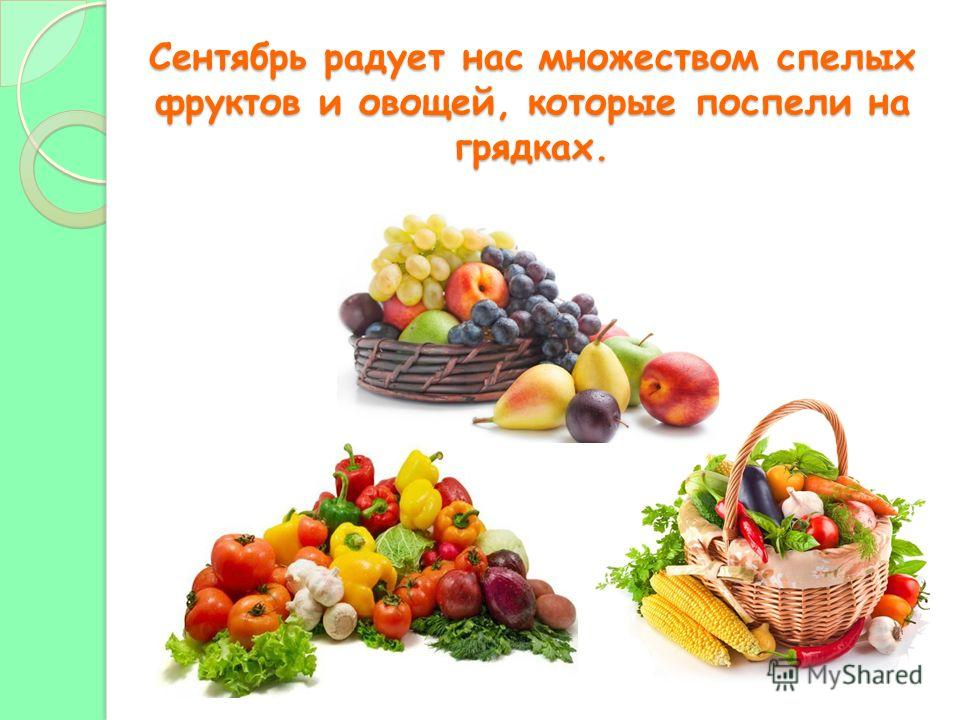 Сентябрь радует нас множеством спелых фруктов и овощей, которые поспели на грядках.